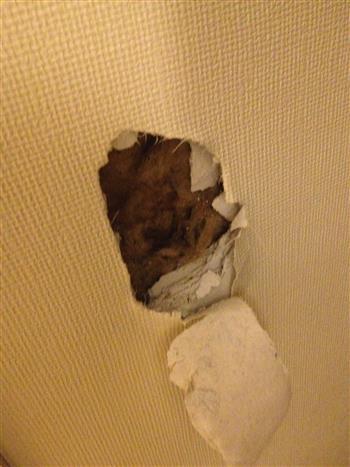 Comment reconna tre l 39 amiante dans votre logement diagconsult - Ardoise fibro ciment amiante ...